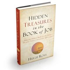 Hidden Treasures in the Book of Job book cover